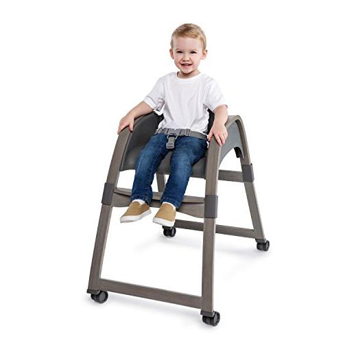 Ingenuity Teddy High Toddler Chair, Booster