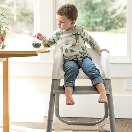 Ingenuity Elite High Chair, and